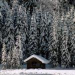 Winter Impressionen